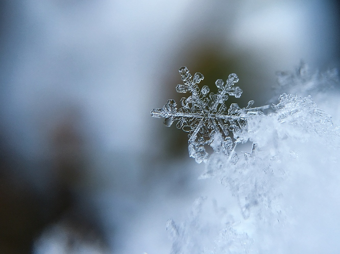 com-Cold-Snow-Crystal-Macro-Snow-Snowflake-Crystal-1245748