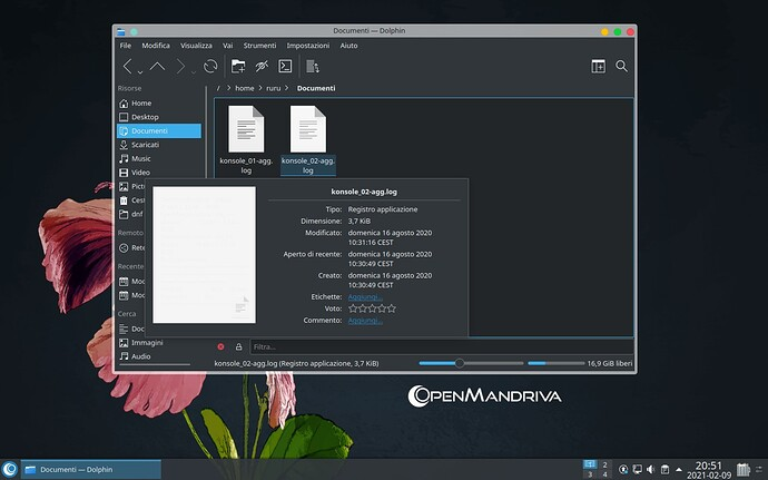 Screenshot_20210209_205146
